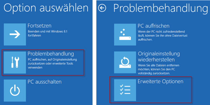 windows8.1_option-auswählen_problembehandlung_de