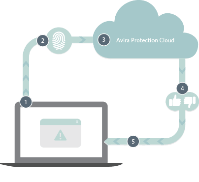 Avira Protection Cloud Info Graphic
