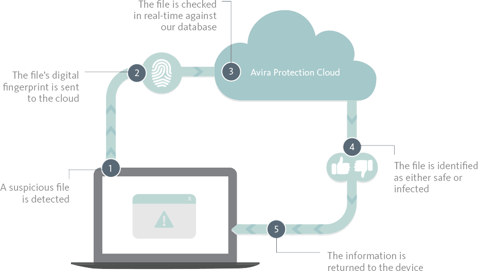 Statistics and overview of phishing attacks