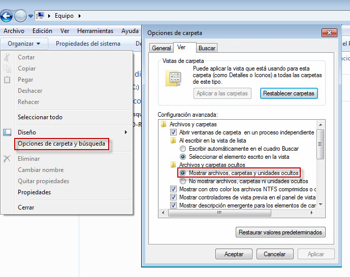 windows_enable_hidden_files_es